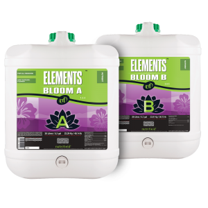 Elements Bloom A & B